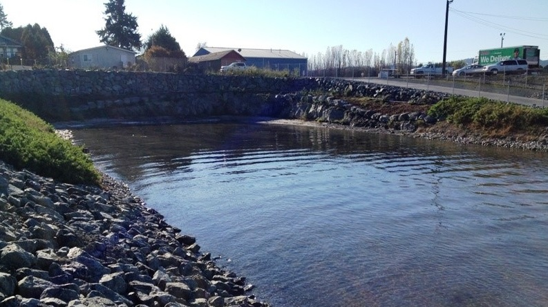 Wyman's Aquatic Habitat Mitigation Site